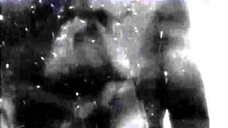 Celebrity Story - Peter Morrissey featuring Teymara (2006)