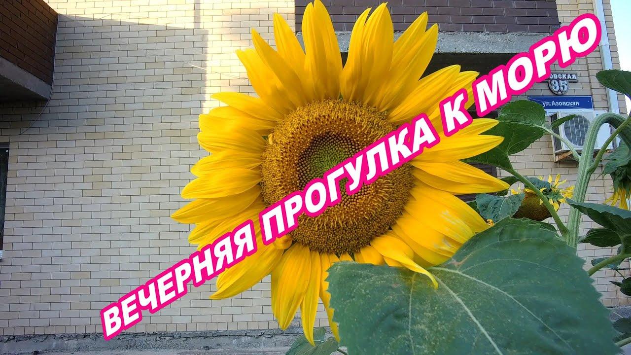 АНАПА 03.07.2020   ВЕЧЕРНЯЯ ДОРОГА К МОРЮ