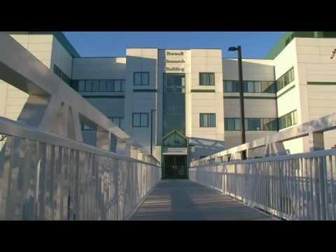 Geisel School of Medicine at Dartmouth - COBRE