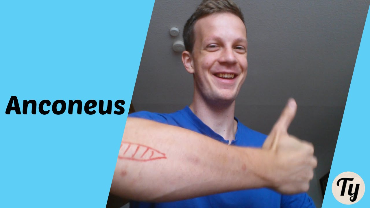 1-Minute Anatomy: Anconeus Muscle - YouTube