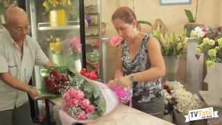 Sylchen Flores - TV Tatu na Boa