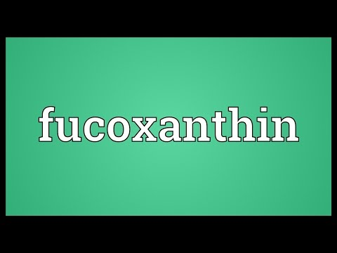 Fucoxanthin Meaning