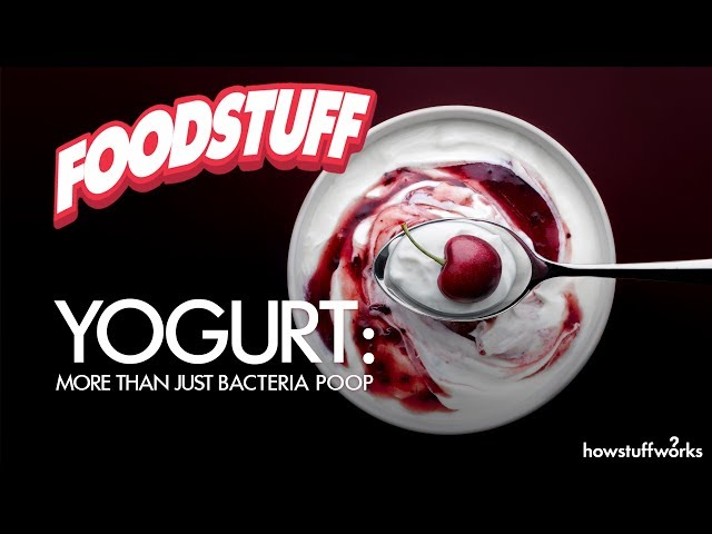 Yogurt: More Than Just Bacteria Poop | FoodStuff
