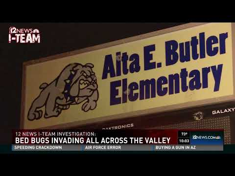 Public places you can find bed bugs in the Valley