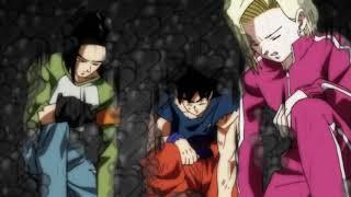 Goku y gohan/picoro eliminan alos universo 2 y 6