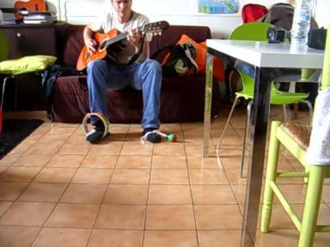 Toute la musique que j'aime guitare