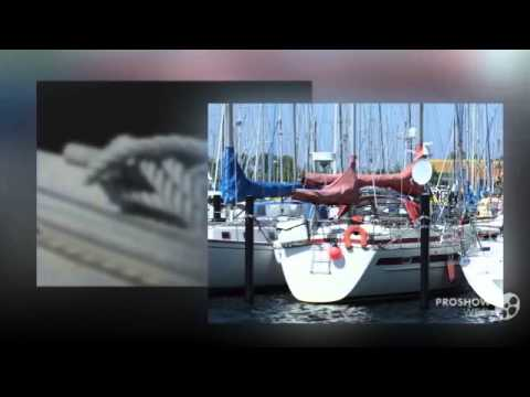 Rex Marin Aphrodite 40 - top gepflegt - Sailing boat, Sailing Yacht Year - 1984