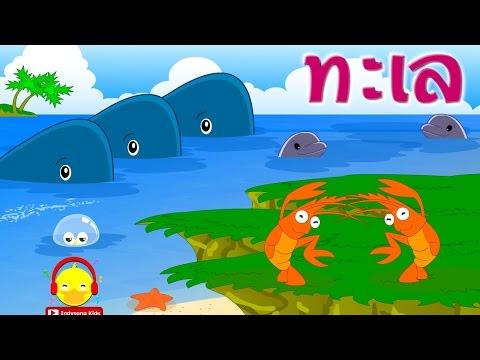เพลงโอ้ทะเลแสนงามมีปลาวาฬปลาโลมา ♫ Thai sea song nursery rhymes เพลงเด็กอนุบาล Indysong Kids