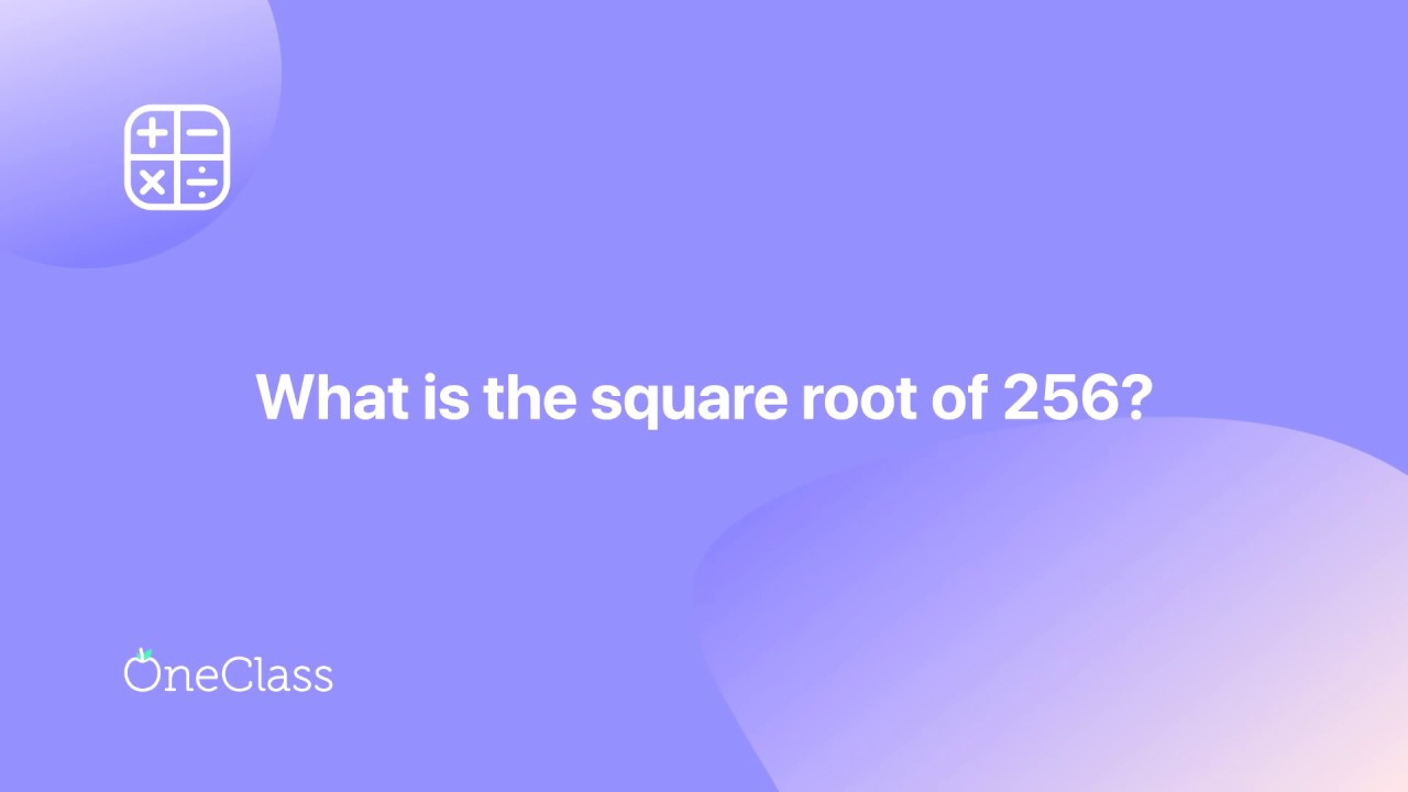 Square Root Of 256 Youtube