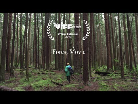 Forest Movie (2017)