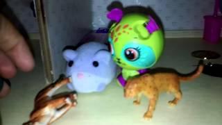 Episode 3 animal territory