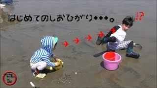 茨城県神栖市にある波崎海岸の波崎海水浴場で潮干狩りをしてきました。 ...