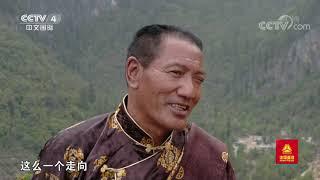 [远方的家]行走青山绿水间 重返故乡的修路人  CCTV中文国际