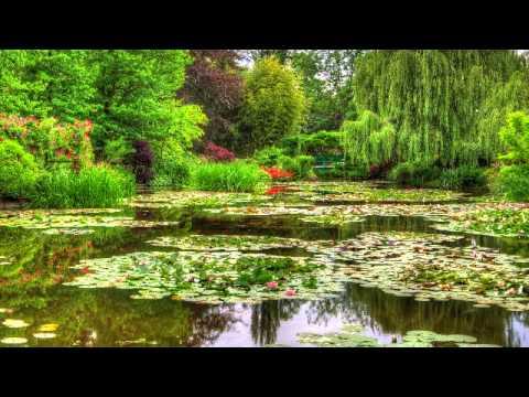 Musica Calma de Meditacao e Relaxamento - 3 Horas de Melodias Tranquilas, Sons da Natureza e Agua