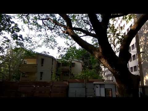 IIT Bombay Campus Tour