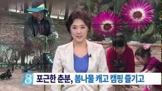 [대구MBC뉴스] 포근한 춘분.. 봄나물 캐고 캠핑 즐기기 Free HD Video