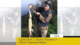Фотоальбом - Рыбалка №249(, 2015-08-27T15:36:00.000Z)