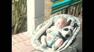 2週間違いで生まれてきた女の子の赤ちゃんと子犬。姉弟以上に深い絆で結ばれていた。
