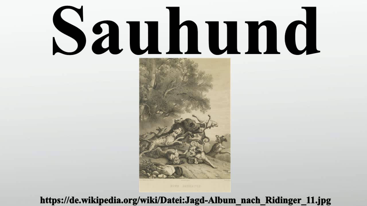 Sauhund