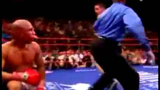 Miguel Cotto vs Antonio Margarito ; Highlights
