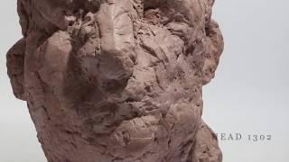Head #1302 | Avner Levinson
