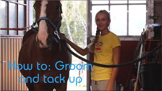 How To: Groom and Tack Up a Horse