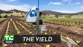 The Yield gives farmers useful data about what's happening on their farms thumbnail