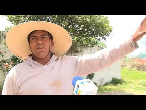 Gobierno de Puebla solicitó a Volkswagen detener uso de bombas antigranizo