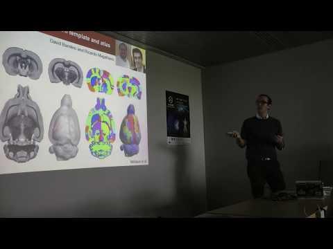 """Conference """"Preclinical High Field MRI"""" @ Neurospin, Benoit Larrat (1/3)"""