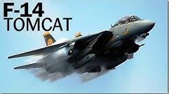 F-14 Tomcat - the TOP GUN