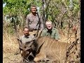 CAMEROON Faro River, Lord Derby Eland, Roan and Buffalo hunting (chasse) by seladang