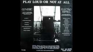 "Generic / Electro Hippies - ""PLAY LOUD OR NOT AT ALL"" Split Album (1987)"