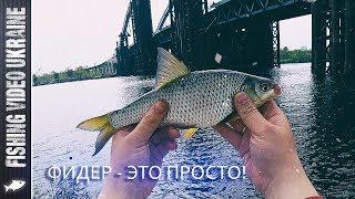 ПРОСТАЯ ФИДЕРНАЯ РЫБАЛКА НА СТАРОМ ДОБРОМ МЕСТЕ   FishingVideoUkraine