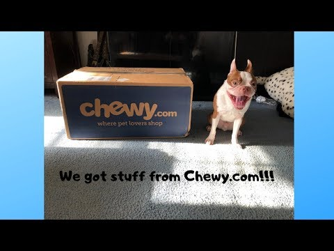 haul-from-chewy!