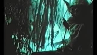 Eritern.com - Звездные войны: Эпизод V - Империя наносит ответный удар 1980 - трейлер