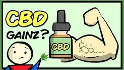 Can CBD Improve Muscle Gains? (Current Evidence)