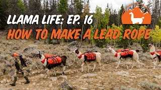 How to Make a Lead Rope - Ep. 16 - Llama Life