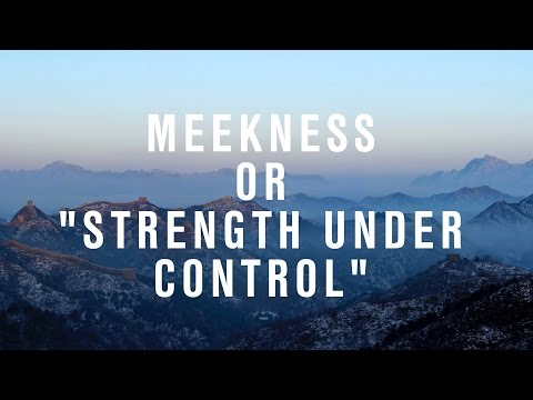 "Meekness or ""Strength Under Control"""