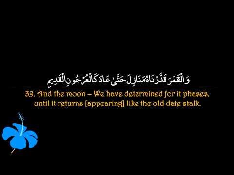 Surah Yaseen   Abu Bakr ash Shatri سورة يس   ابو بكر الشاطري
