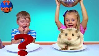 Обычная Еда против Мармелада Челлендж! Бешеный Хомяк! Видео для детей