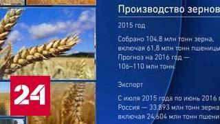 Уильям Энгдаль о перспективах российского зерна