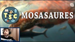 TSC#08 - Mosasaures, de Jurassic World à la Science (F-L Reptile)