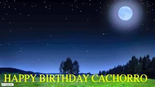 Cachorro   Moon La Luna - Happy Birthday