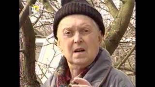 видео Борьба с вредителями яблонь (обработка от вредителей): весной, летом, осенью