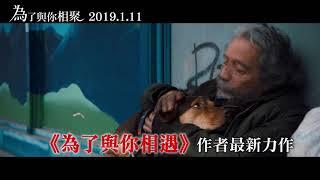 【為了與你相聚】2019必看萌寵電影-15秒禮物篇 01.11 只想回到你身邊