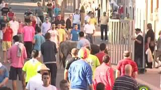 Primer Encierro de Medina del Campo - San Antolín 2014
