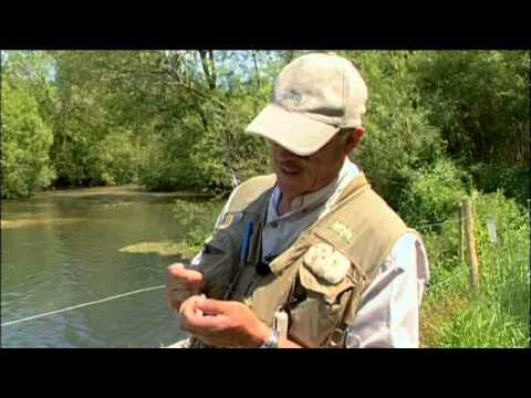 Born to Fish  Fly fishing River Wylye