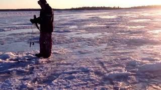 Ice fishing Manitoba Nelson river ice fishing fanatics 5