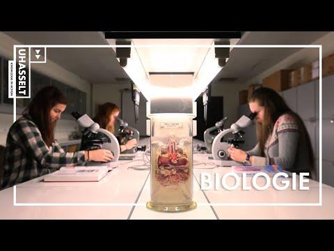 Biologie studeren aan de UHasselt