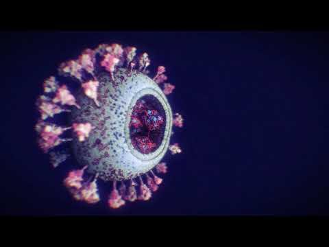 Así es el coronavirus en 3D